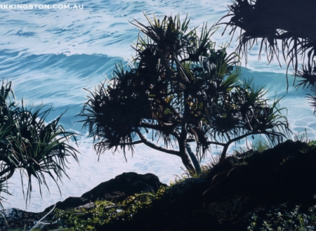 pandanus trees at point danger 6th March 2014 72dpi