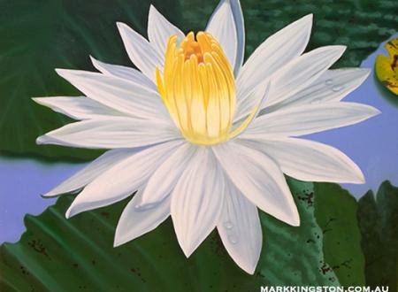 White Lotus 72dpi 2nd Feb 2014